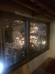 2階飲食コーナーから夜桜見物